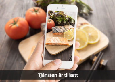 Elvenite söker trainee inom digitalisering av livsmedelsindustrin