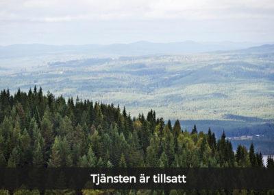 Region Värmland söker trainee till avdelningen för regional tillväxt