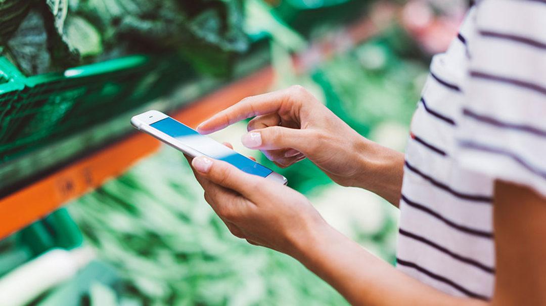 (OBS! TILLSATT) Elvenite söker Graduate trainee som brinner för Mat, Hållbarhet och Digital transformation